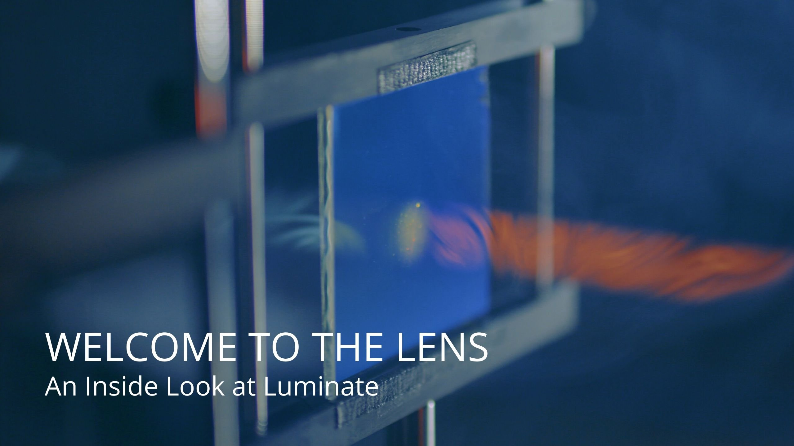 The Lens - January 2020 - featured image